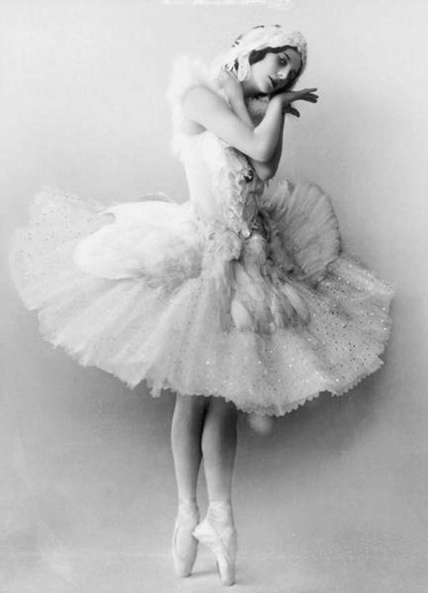 pavlova-como-cisne